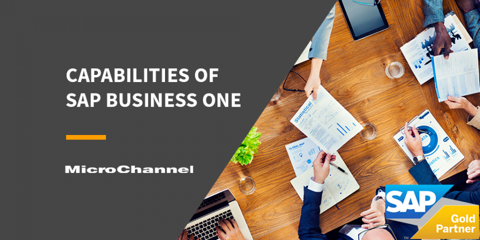 sap business one capabilities