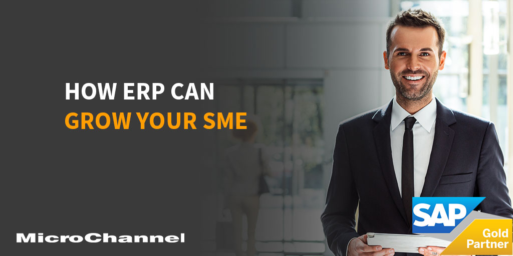 erp can grow your sme