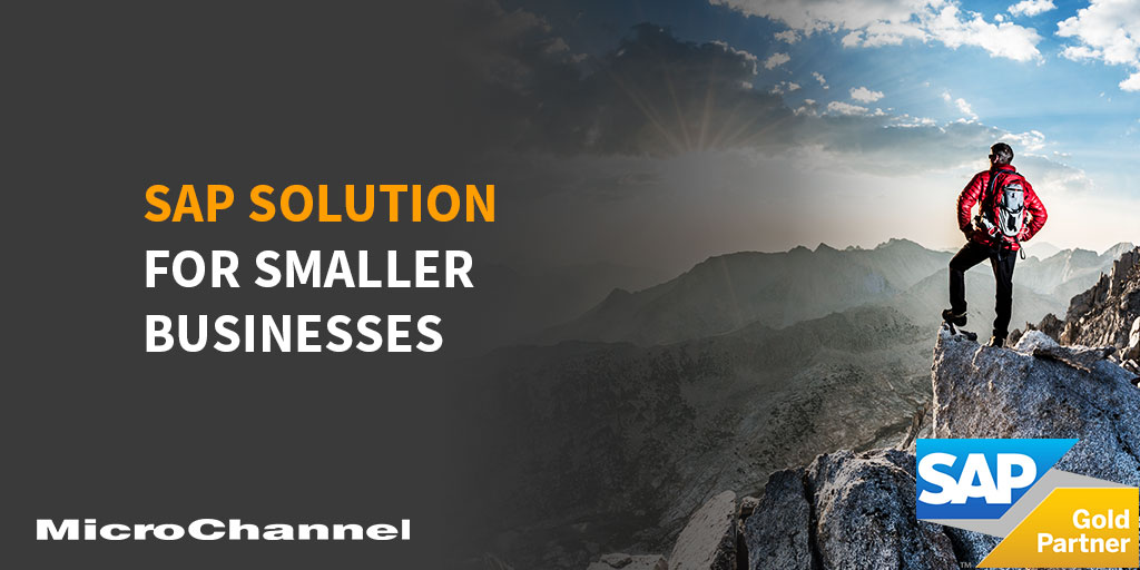 sap solutions for smaller businesses