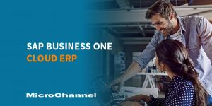 sap business one cloud erp