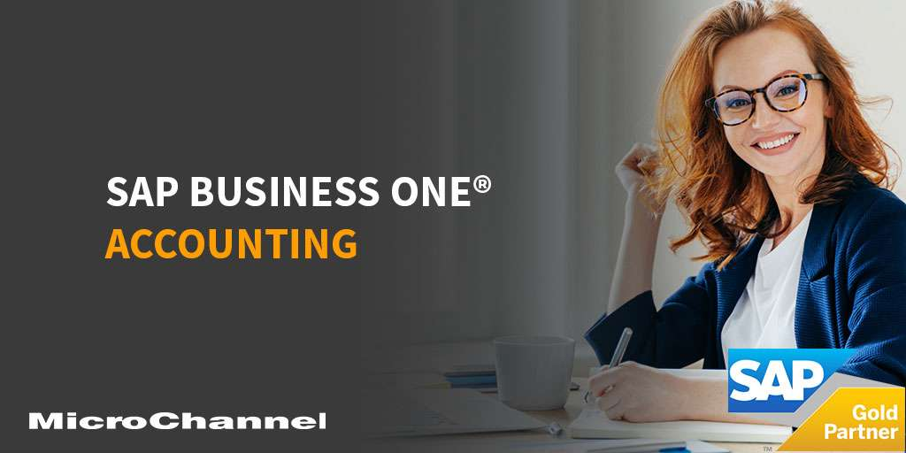 sap business one accounting system