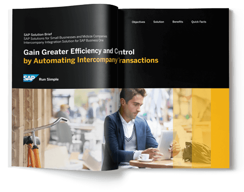 sap business one intercompany brochure
