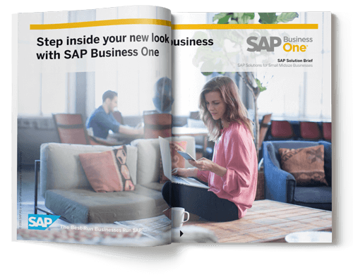 sap business one solution brief brochure